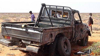 Three U.S. airstrikes kill seven al-Shabaab militants in Somalia