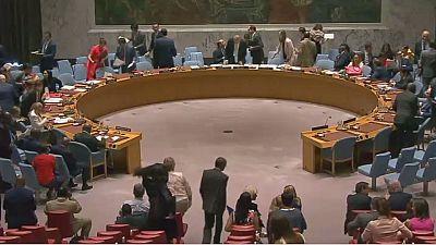 U.N. Security Council members urge new probe into killings of monitors