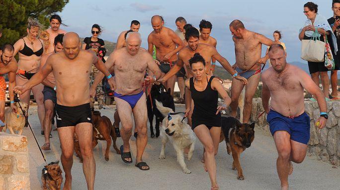 رالي السباحة بمعية الكلاب في كرواتيا