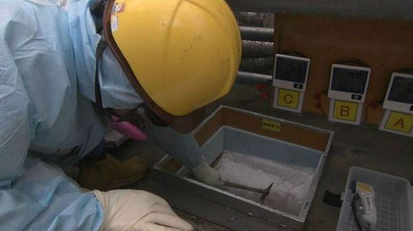 Jégszőnyeg épül a fukusimai atomerőműnél