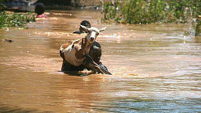 Une saison des pluies 2017 meurtrière sur le continent