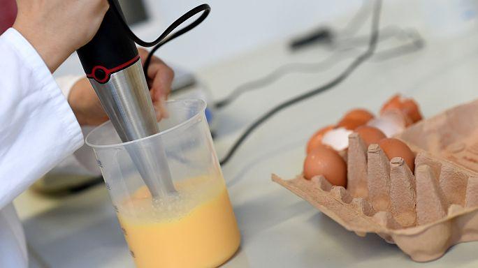 Fipronil: nuovo sequestro di uova contaminate a Viterbo e Ancona