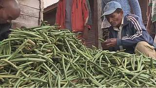 Vanilla prices soar in Madagascar