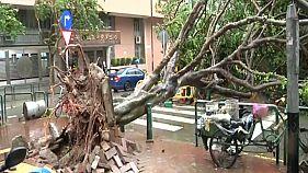 طوفان «هاتو» در جنوب چین دست کم ۱۲ کشته به جا گذاشت