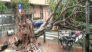"""12 قتيلا على الأقل جنوب الصين جراء إعصار """"هاتو"""""""