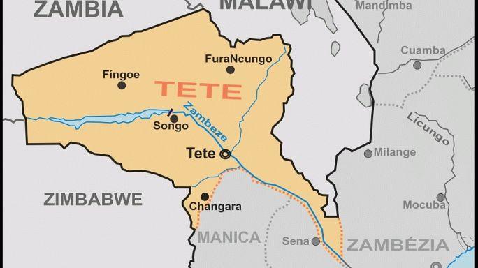 A maior floresta fossilizada do continente africano está em Tete