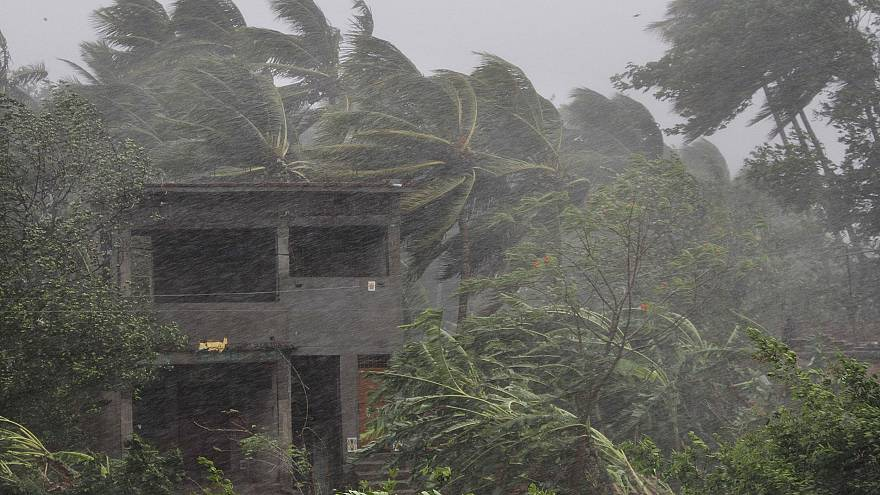 Image: An abandoned house and trees bend with gusty winds ahead off the lan