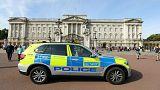 پلیس بریتانیا از بازداشت مظنون دوم حمله کاخ باکینگهام خبر داد