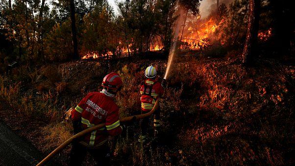 Incêndios no centro do país ocupam os bombeiros