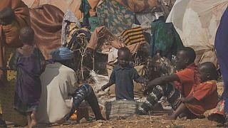 Somali ülke tarihinin en büyük kuraklığını yaşıyor