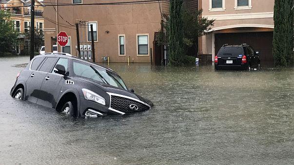 Harvey Kasırgası ardından sel çilesi