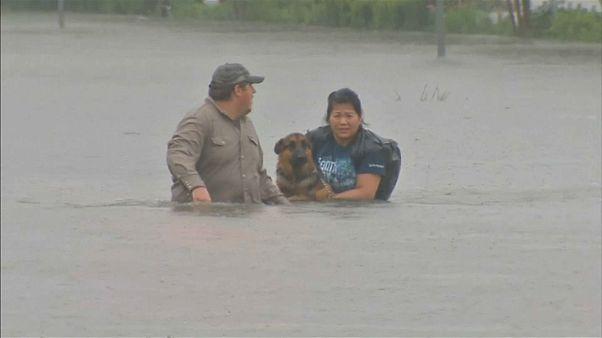 Uragano Harvey: Houston sott'acqua, 2mila le persone soccorse