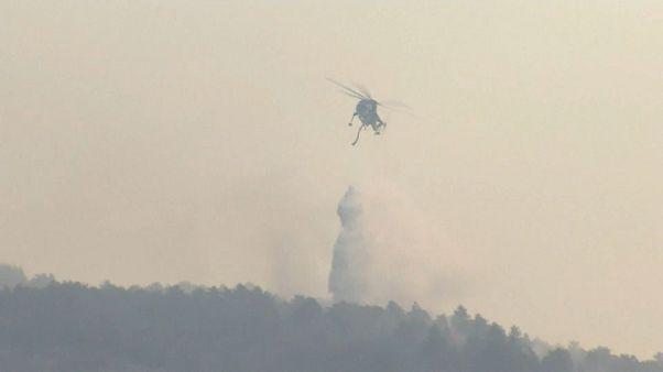 Incendi in centro e sud Italia: interviene l'esercito in Abruzzo e Calabria