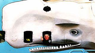 Les baleines seules contre le Japon : Sea Shepherd est impuissante