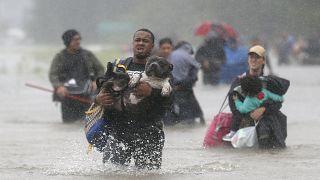Operações de socorro no Estado do Texas após furacão Harvey