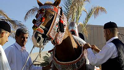 Libya's saddle craft kept alive by a few artisans.