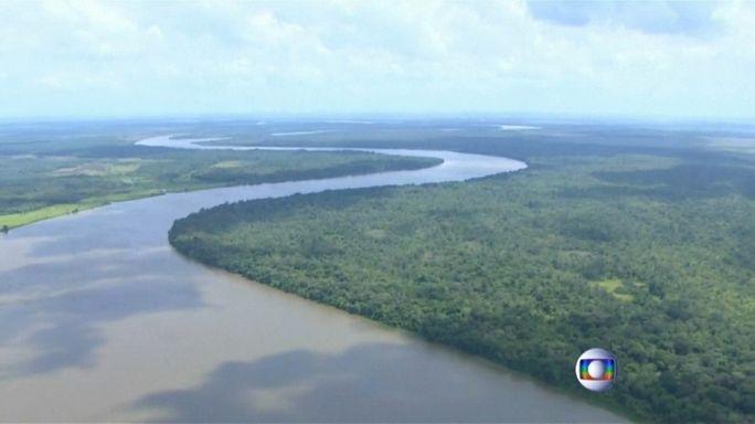 La naturaleza gana la primera batalla a Michel Temer en los tribunales brasileños