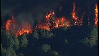 Erdőtűz pusztít Kaliforniában
