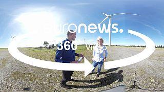 360° الانتخابات الالمانية: من انتاج الحليب الى انتاج الكهرباء