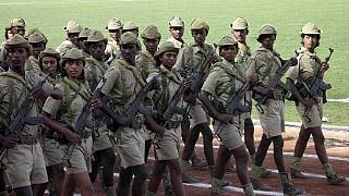 Eritrean veterans can 'safely' be sent home: Swiss court rules