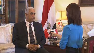 Egypt hails BRICS Plus initiative