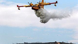 1000 رجل إطفاء في لوس أنجلوس لإخماد الحريق الأكبر في تاريخ الولاية