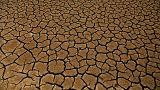 España cada vez más seca, Alemania cada vez más húmeda