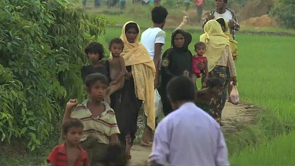 Рохинджа пытаются пересечь границу
