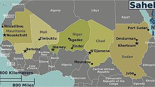 """""""Un plan Marshall"""" pour la sécurité au Sahel (experts)"""