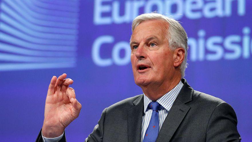 EU's Barnier 'worried' by UK's position on Irish border