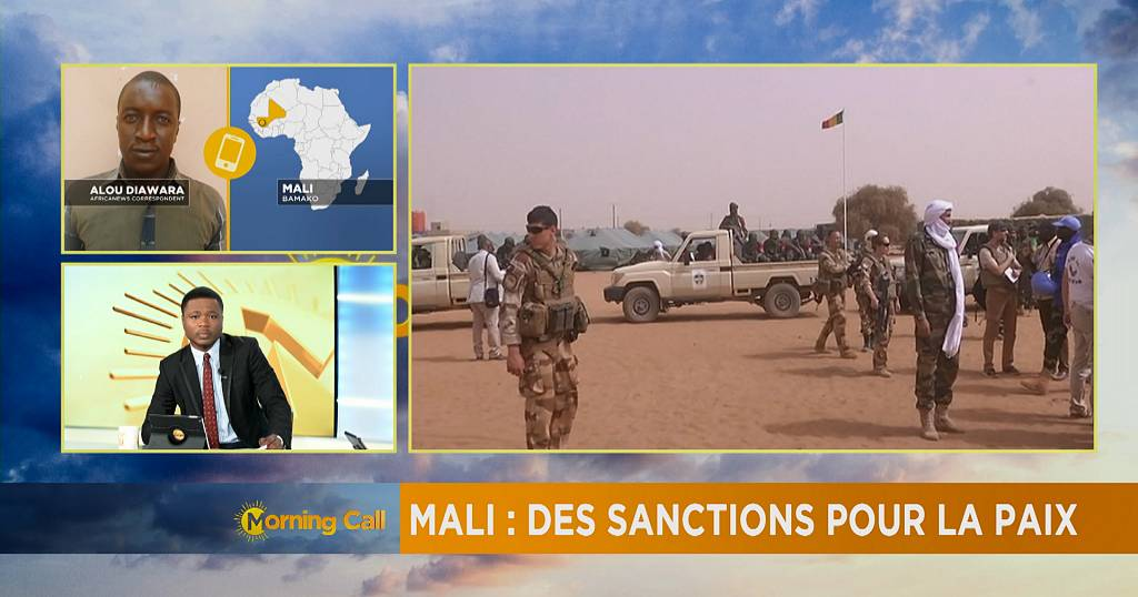 UN Approves Mali U0026 39 S Government Proposed Sanctions The