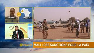 UN approves Mali's government proposed sanctions [The Morning Call]