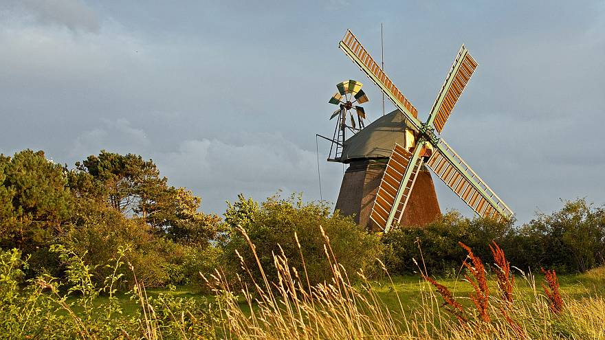 Schleswig-Holstein: Landwirte werden zu Energiewirten