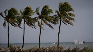 """15 قتيلا على الأقل جراء إعصار """"إيرما"""""""