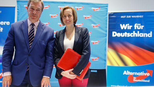 Farage talks Brexit at German far-right rally