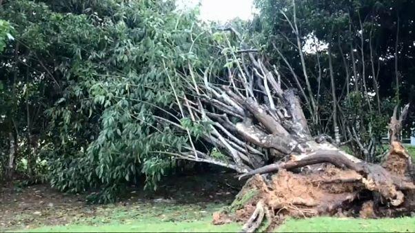 Irma : les explications d'un climatologue