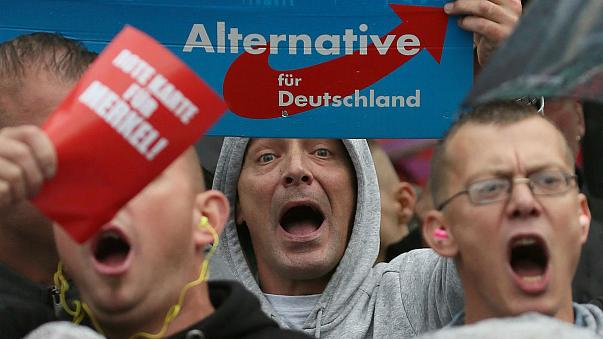 Alternative for Germany: what do Nigel Farage's new friends stand for?