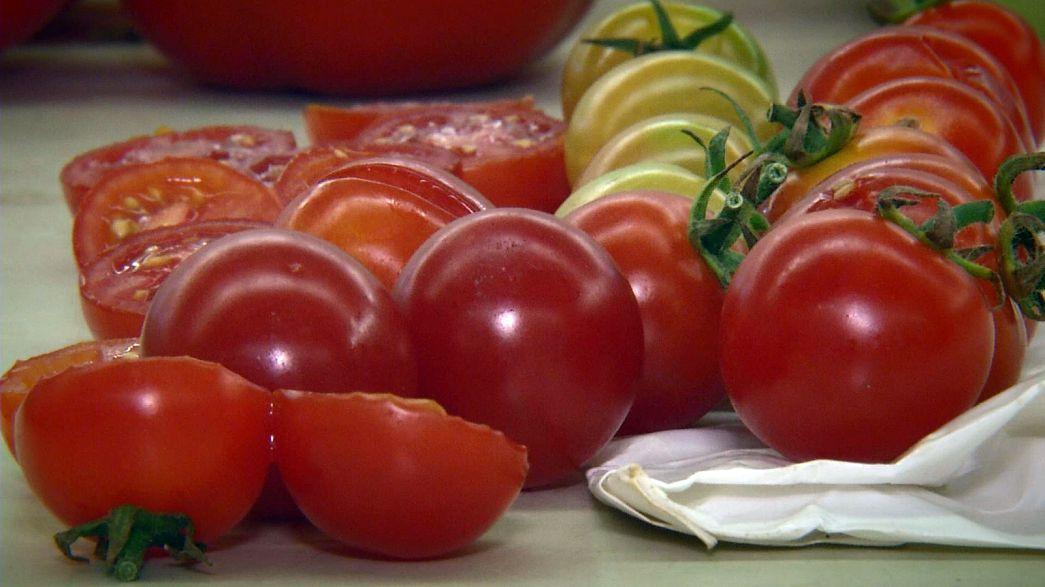 Takeaway: Tomatoes in the desert