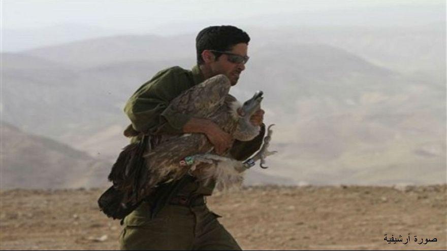 إسرائيل تستعيد جاسوسها الطائر من أيدي المعارضة السورية