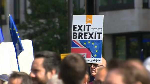 Manifestation anti-Brexit à Londres