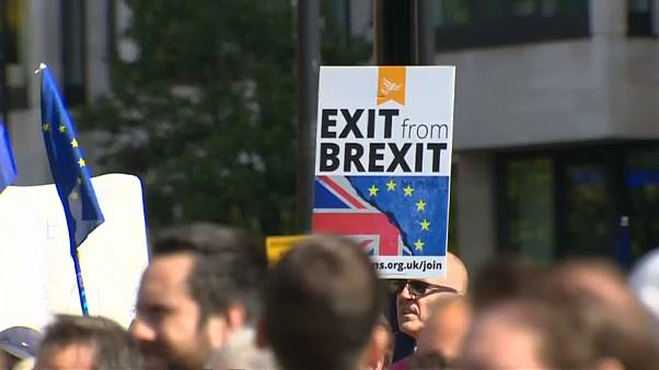 Pro-EU protest in London calls for an end to Brexit