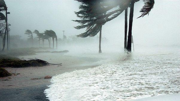 ماندن در جزایر فلوریدا «خودکشی» است