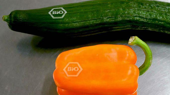 Tattooed cucumbers in the fight against plastic