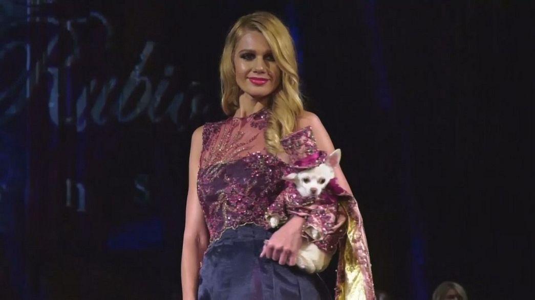 Alta costura para perros en la Semana de la Moda de Nueva York