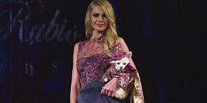 Moda para humanos e cães