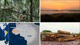 Massacre présumé en Amazonie
