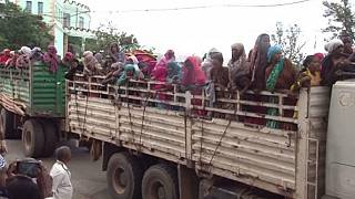 Ethiopia's ethnic crisis escalates: deaths, displacements reported