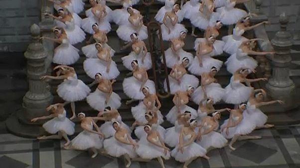 Ballerinas treat commuters to Swan Lake recital in Antwerp
