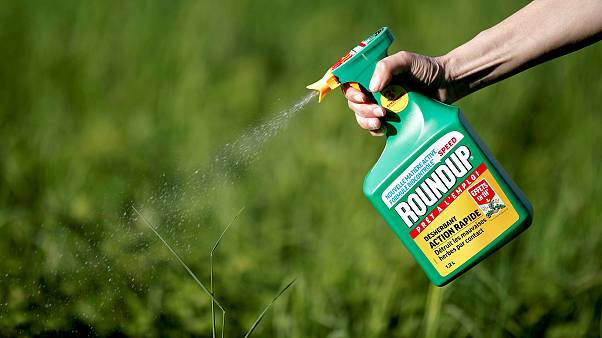 Image: FILE PHOTO: A woman uses a Monsanto's Roundup weedkiller spray witho