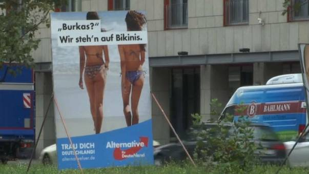 A real alternative?: the rise of the far right in Germany